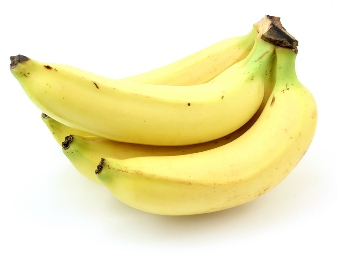 Bananas_white_background.jpg